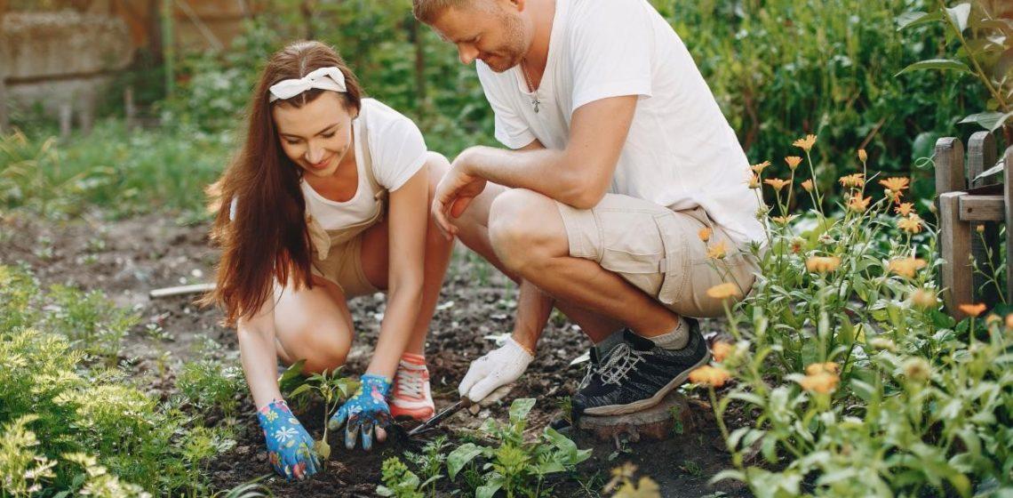 Ako a kde začať v záhrade s jarnými prácami?